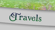 Travels Page Button